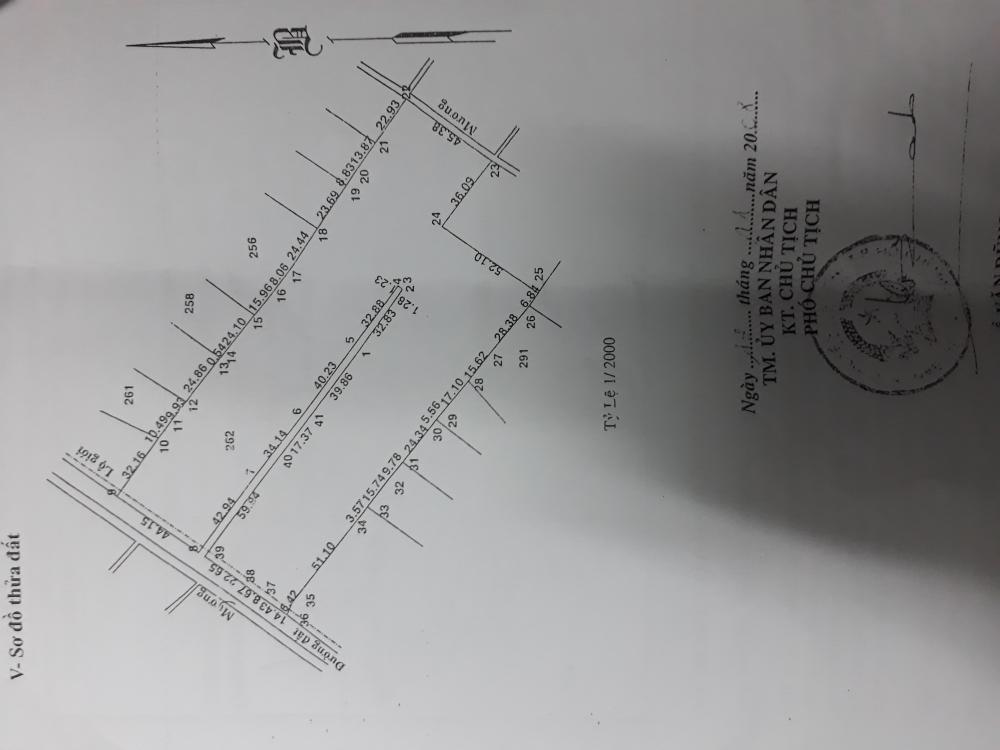 Cần bán gấp MT Bưng Tràm, Tân Thạnh Tây,Củ Chi, DT. 18550m2(81 x 229m)giá 9 tỷ.LH 0918883479