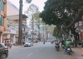 Bán gấp nhà mặt tiền Phan Văn Trị, quận 5, DT: 3.8m x 12m, giá bán chỉ có 11.8 tỷ. 6792191