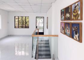 Hàng ngon mới Trường Sa HXH tránh 4 tầng KD chỉ 3.7 tỷ. 7160347